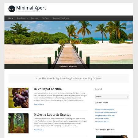 minimal-wordpress-xpert-theme